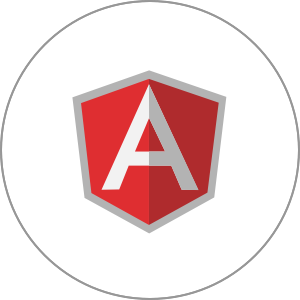 Technology-Supported-angularjs
